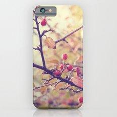 Berry Christmas iPhone 6s Slim Case