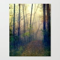 Wandering In A Foggy Woo… Canvas Print