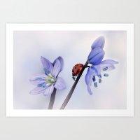 Ladybird On Purple Flowe… Art Print