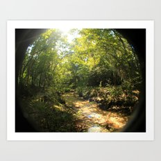 creeky Art Print