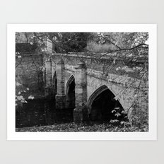 Eltham Palace Bridge Art Print