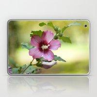 Hardy Hibiscus Laptop & iPad Skin