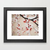Winterberry Framed Art Print
