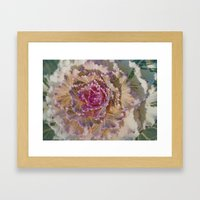 Ornamental Kale 9346 Framed Art Print