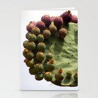 Fertility 0614 Stationery Cards