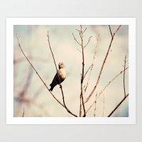 Good Morning said the Bird Art Print