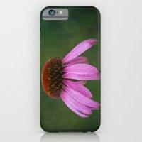 Purple Coneflower iPhone 6 Slim Case