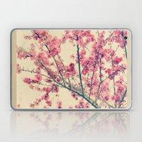 Cherry Pink Spring Blossoms of Ornamental Peach Tree Laptop & iPad Skin