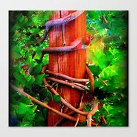 Post & Vines Canvas Print