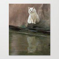 White cat Canvas Print