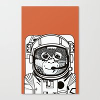 Searching for human empathy 2 Canvas Print