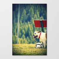 Canvas Print featuring bullDog by Silvia Giacoletto