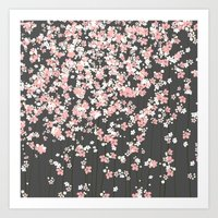 Black background Pink Shidare Zakura Art Print