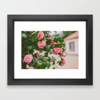 Camellias Framed Art Print