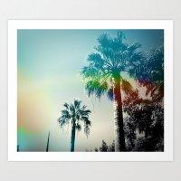 Palm Trees Of Barcelona Art Print
