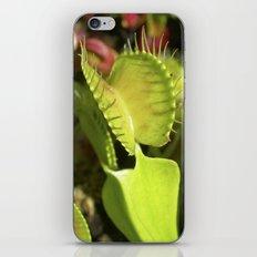 venus flytrap II iPhone & iPod Skin