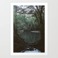 Drabby Swampy Creek Art Print