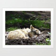 Let Sleeping Wolf Sleep Art Print