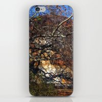 Rusted and Forgotten iPhone & iPod Skin