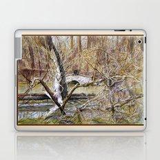 Somewhere in  America Laptop & iPad Skin