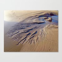 A Tree In The Sand Canvas Print
