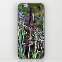 Summer Meadow with Wild Flowers iPhone & iPod Skin