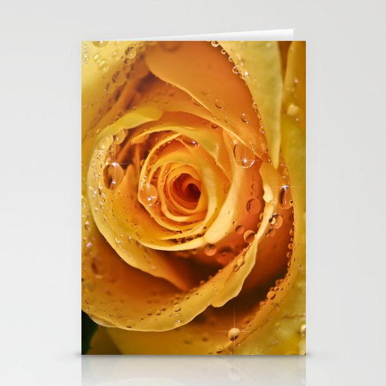 Champagne Cider Rose Stationery Card