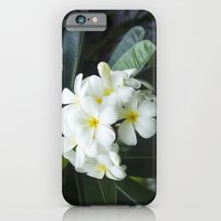 iPhone & iPod Case featuring belles fleurs de l'île - Beautiful Flowers Of The Island by Sharon Mau