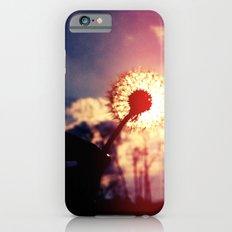 Dandelion in the Sun iPhone 6 Slim Case