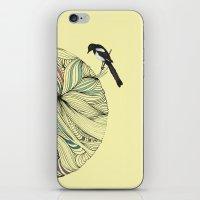 Magpie iPhone & iPod Skin