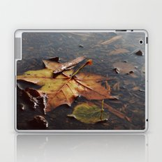 Float away Laptop & iPad Skin