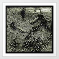 'FOREST FLOOR' Art Print