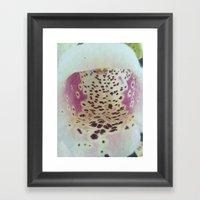 Foxglove 2 Framed Art Print