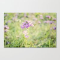 Soft Flower Canvas Print