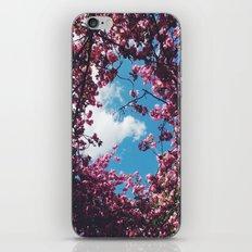 SPRING 5 iPhone & iPod Skin