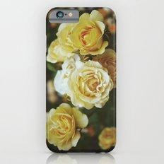 Roses Slim Case iPhone 6s