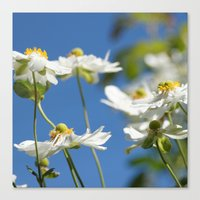End Of The Summer Canvas Print