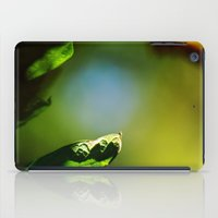 Days Of Antique Youth iPad Case