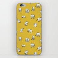 Indian Baby Elephants iPhone & iPod Skin