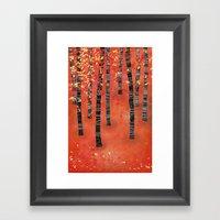 Birches Framed Art Print
