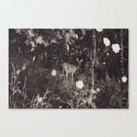 Didi in Another Dimension Canvas Print