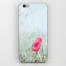 Thoughtful Poppy iPhone & iPod Skin