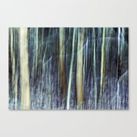 Wild Woods Canvas Print