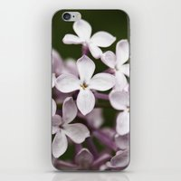 Lilac blossoms iPhone & iPod Skin