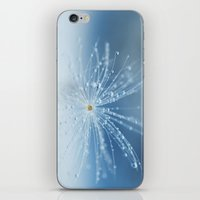 Star Of Drops iPhone & iPod Skin