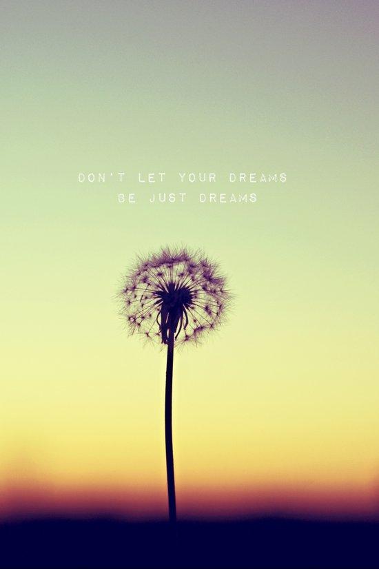 Don't let your dreams be just dreams  Art Print