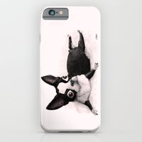 The Little Fat Boston Terrier iPhone 6 Slim Case