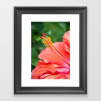 Tropical Bloom Framed Art Print