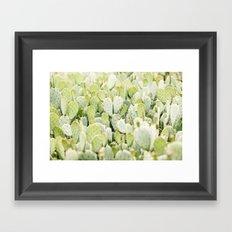 cactus gathering Framed Art Print