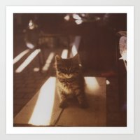 Kitten Of The Souk Art Print
